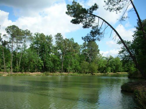 parc monsalut