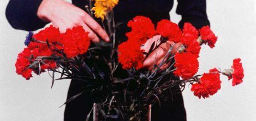 La MECA - Narcisse et floraison du monde