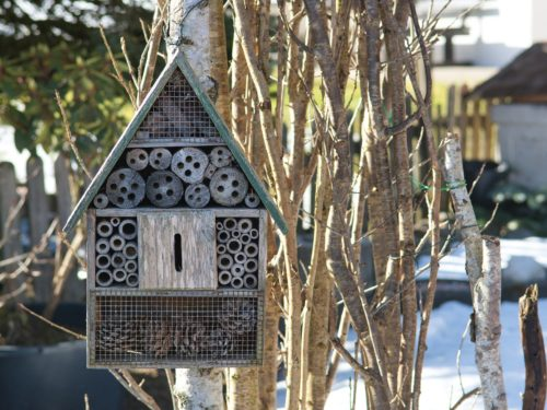 insect-hotel-4883702_1920