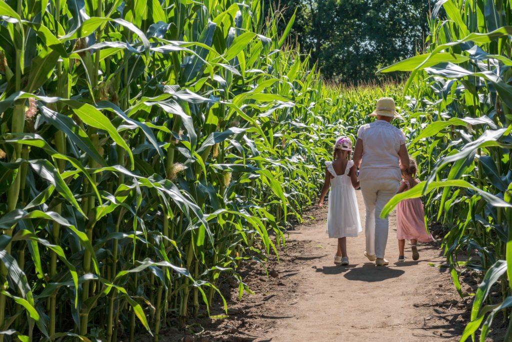 Pop corn 3- Cre´dit photo Pop Corn Labyrinthe